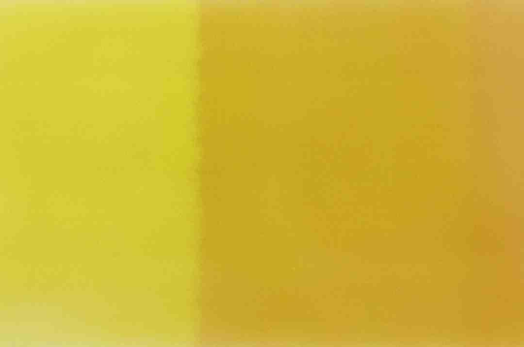Rose jaune signification
