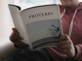 Proverbe vin