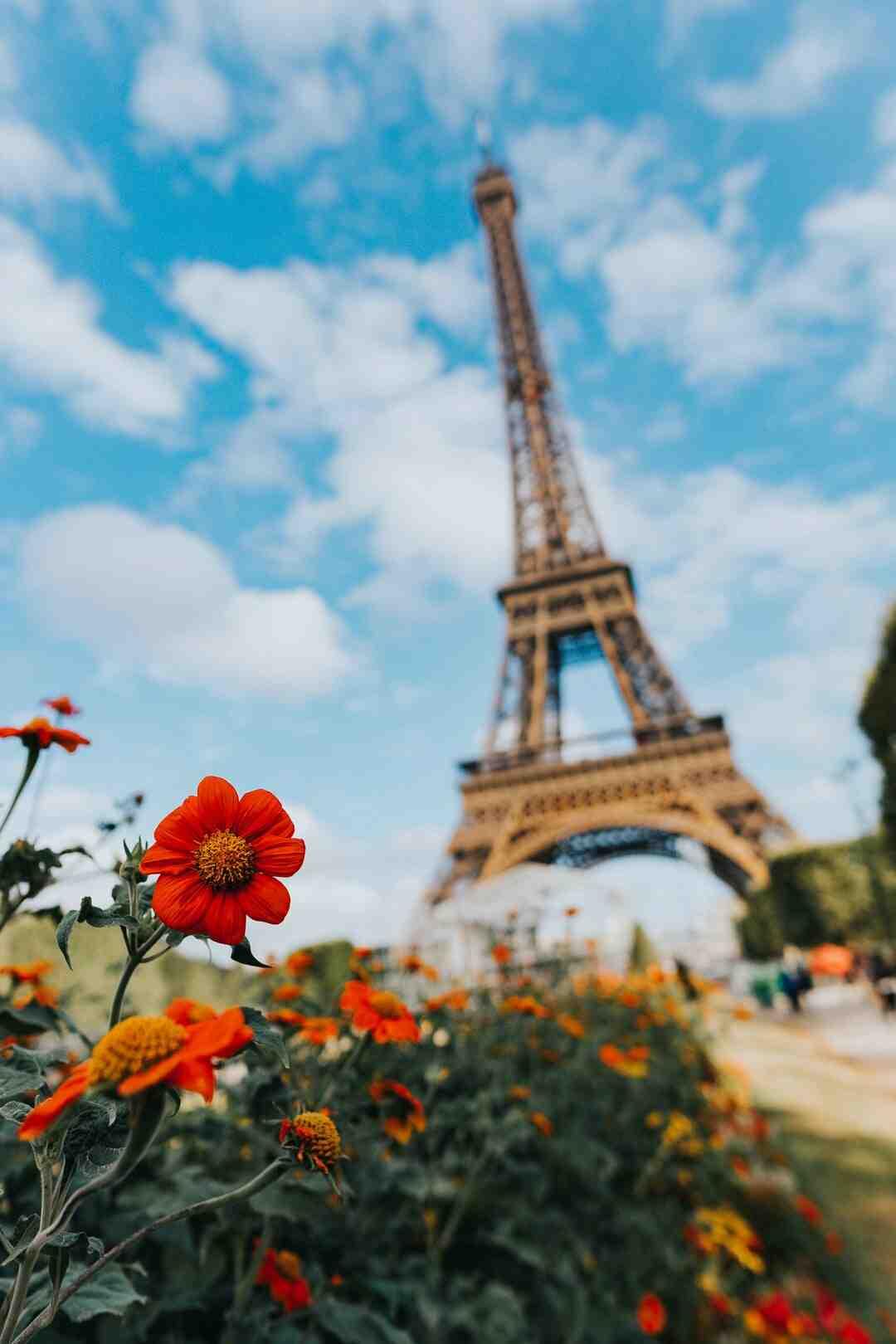 Quel est le prénom le plus utilisé en France ?